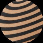 hypnose camel